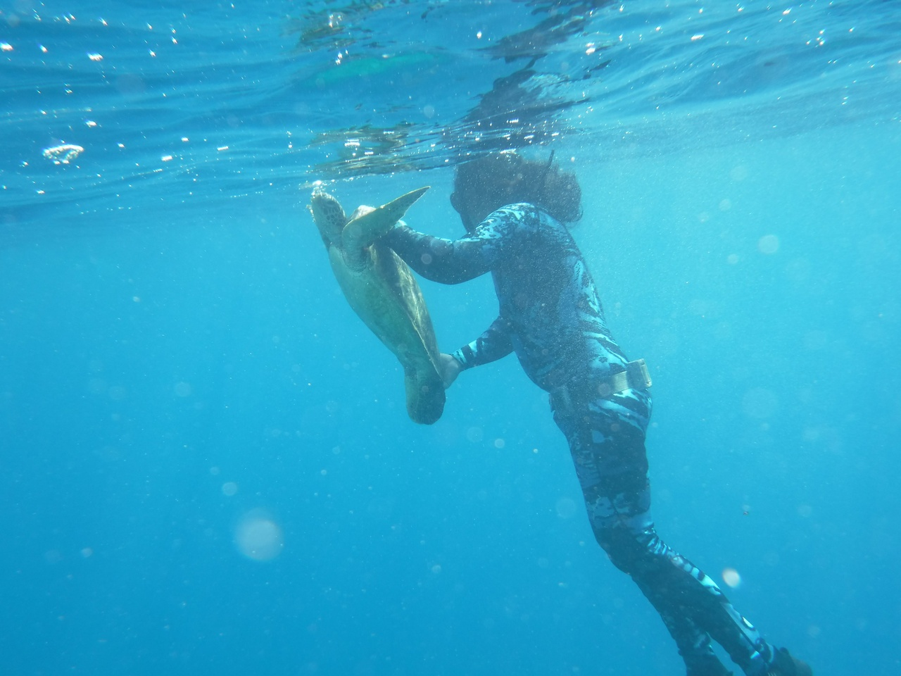 Freediving expert Jessy Hapdei with a green turtle hand captured in the waters of Saipan, CNMI.