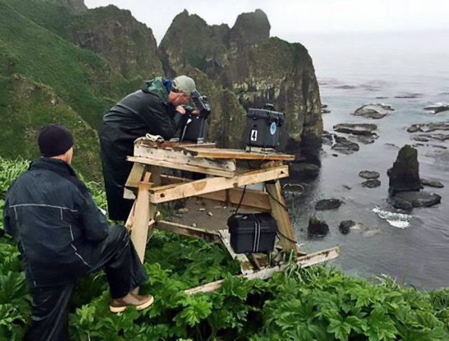 Brian Fadely (left) and Tom Gelatt (right) retrieve memory cards from two remote cameras at the rookery on Agattu Island, in the Near Islands.