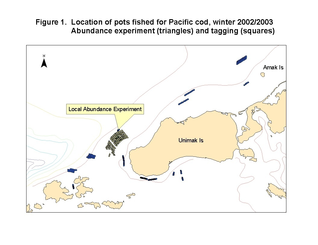 The exact study location and location of pots fished for Pacific cod in 2002 and 2003.