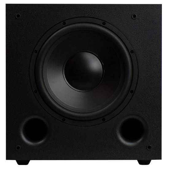 "10"" Nuvo Woofer - Front"