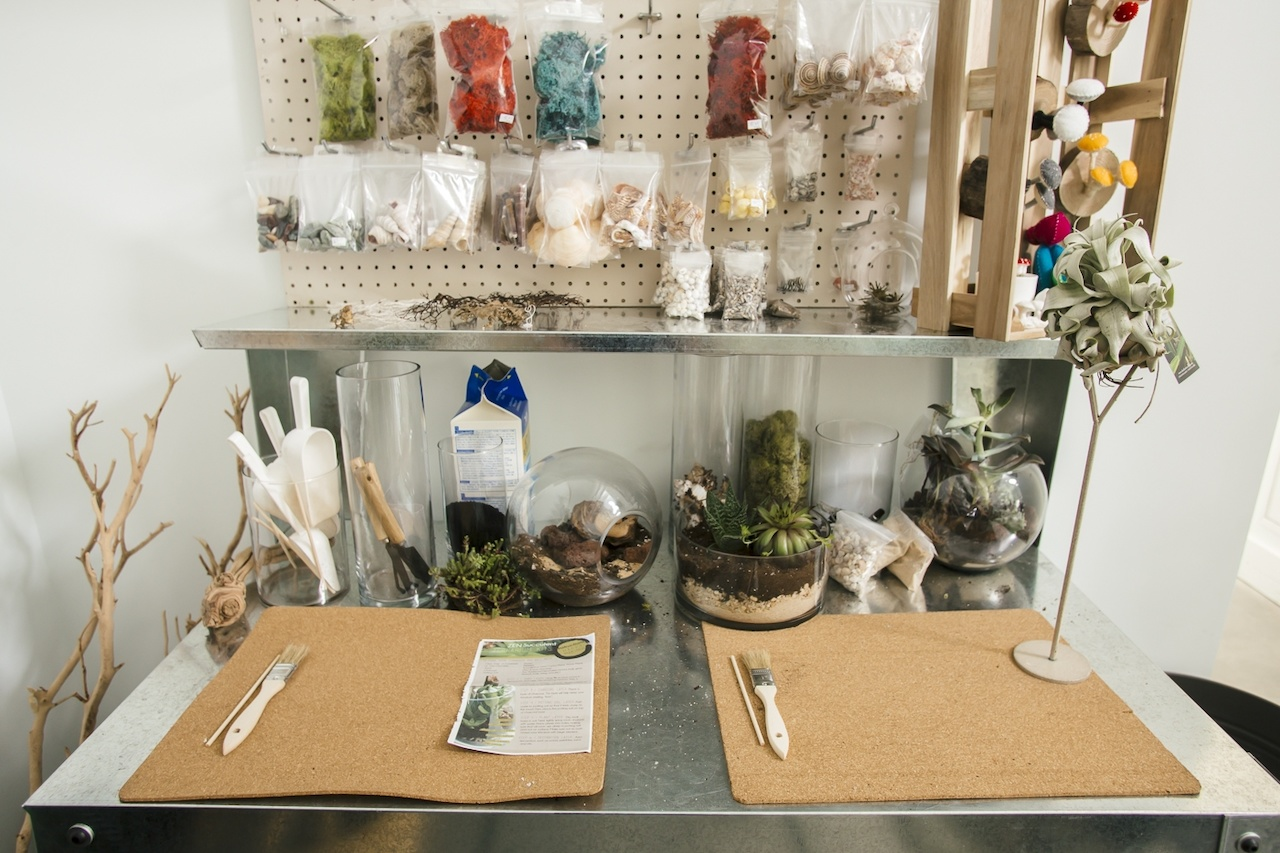 You'll find everything you need to make your very own terrarium at The ZEN Succulent.