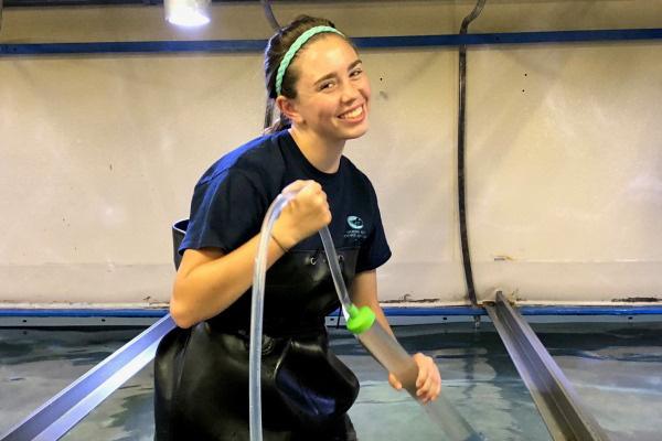 aquarium-intern-cleaning-tank.jpg