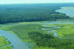 Chesapeake Bay estuary