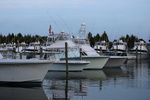 Fishing boats in Pirate's Cove Marina.JPG.jpg