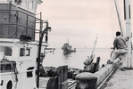 Historic picture of longline vessels in black and white.
