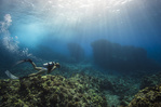 A woman scuba dives atop a coral reef in the tropical waters of Kona, Hawaiʻi. Credit: Christine Shepard.