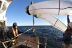 1188x792-plankton-net-retrieval-2019-ne-ecomon-cruise.png