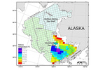 Eastern Bering Sea Shelf Survey