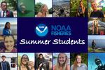 2020 student graphic