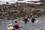 Families out exploring tide pools at Yaquina Head Natural Area on the Oregon Coast. Image: Bureau of Land Management