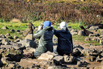 Northern Fur Seal Researchers, Photo by L. Rea