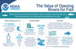 The Value of Opening Rivers for Fish Infographic
