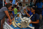 Staff speak with visitors at NOAA whale exhibit, with bones and baleen on display.