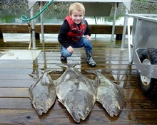 Kid Hanging Out with Halibut