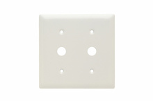 Communication Plate, Two Gang, White