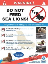 steller-sea-lions-do-not-feed-english-sign.jpg