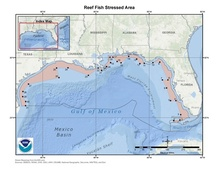 This is a map of reef fish stressed area in the Gulf of Mexico.