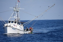 Tuna vessel Midori