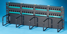 Clarity 5E hinged 48-port panel with lower cable management panel - Cat5e - six-port modules - 19 in x 7.0 in