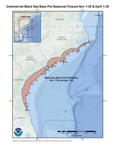 This is a map of the commercial black sea bass pot closure for November and April in the South Atlantic Region.