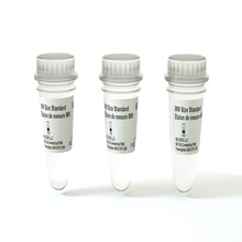 Molecular Weight Sizing Standard - 3 Pack product photo