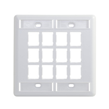 HDJ 12 PORT DOUBLE GANG FACEPLATE, FOG WHITE, WITH LABEL FIELD, WHITE