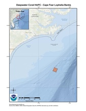 This is a map of the Cape Fear Lophelia Banks Deepwater Coral HAPC in the South Atlantic Region.