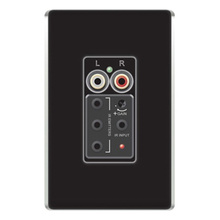 lyriQ Flush Mount Single Source Input, Black