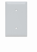 Blank Plates -- Strap Mounted, One Gang, White