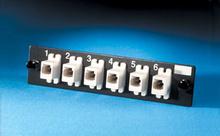 6-MT-RJ (12 fibers) feed-through, multimode adapters
