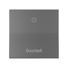 Engraved Paddle™ Switch, 15A, Magnesium - Doorbell