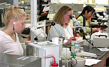 NOAA Scientists at work in the lab.