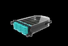 Infinium Quantum M4 Splice Cassette, 24 Ribbon Fiber, LC Quad OM4