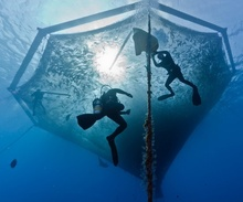 Hawaiian Net Pen. Courtesy of Blue Ocean Mariculture.