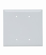 Blank Plates, Box Mounted, Two Gang, White