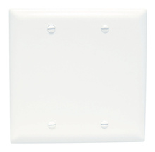 Blank Plates -- Box Mounted, Two Gang, White