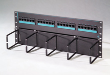 Clarity 6 hinged 24-port panel with lower cable management panel - Cat6 - 19 in x 7.0 in