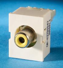 TracJack Module, yellow, Phono/RCA to 110, Fog White