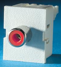TracJack Module, Phono/RCA to 110, red insulator, Fog White