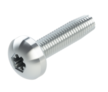 DS-9006-S4 1224x34TORX F SS SCREW  HDWR