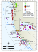 Thumbnail, coastwide map of designated groundfish EFH, last revised with Amendment 19 in 2006.