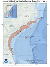 This is a map of the commercial black sea bass pot closure Dec 1 - Mar 31 in the South Atlantic Region.