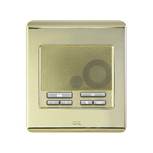Selective Call Intercom Patio Unit, Shiny Brass