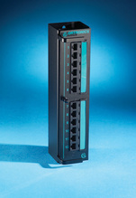 Clarity 5E 12-port - Category 5e mini patch - hinged mounting - 10 in x 2.5 in