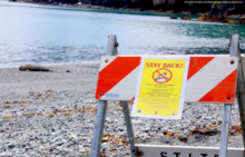 Traffic signs were placed around the seal notifying the public to keep a respectful distance.