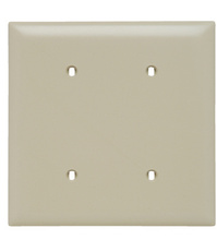 Blank Plates -- Strap Mounted, Two Gang, Ivory
