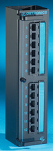 Clarity 6 12-port Category 6 mini patch panel - hinged mounting - 10 in x 2.5 in