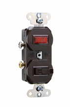 Single-Pole Combination Switch & Pilot Light, Brown