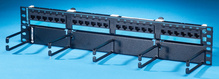 Clarity 6 hinged 24-port panel with lower cable management panel - Cat6 - 19 in x 3.5 in