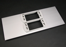 AL5200 Large Multi-Channel Raceway Device Cover Plate With Two Low Profile Adapters